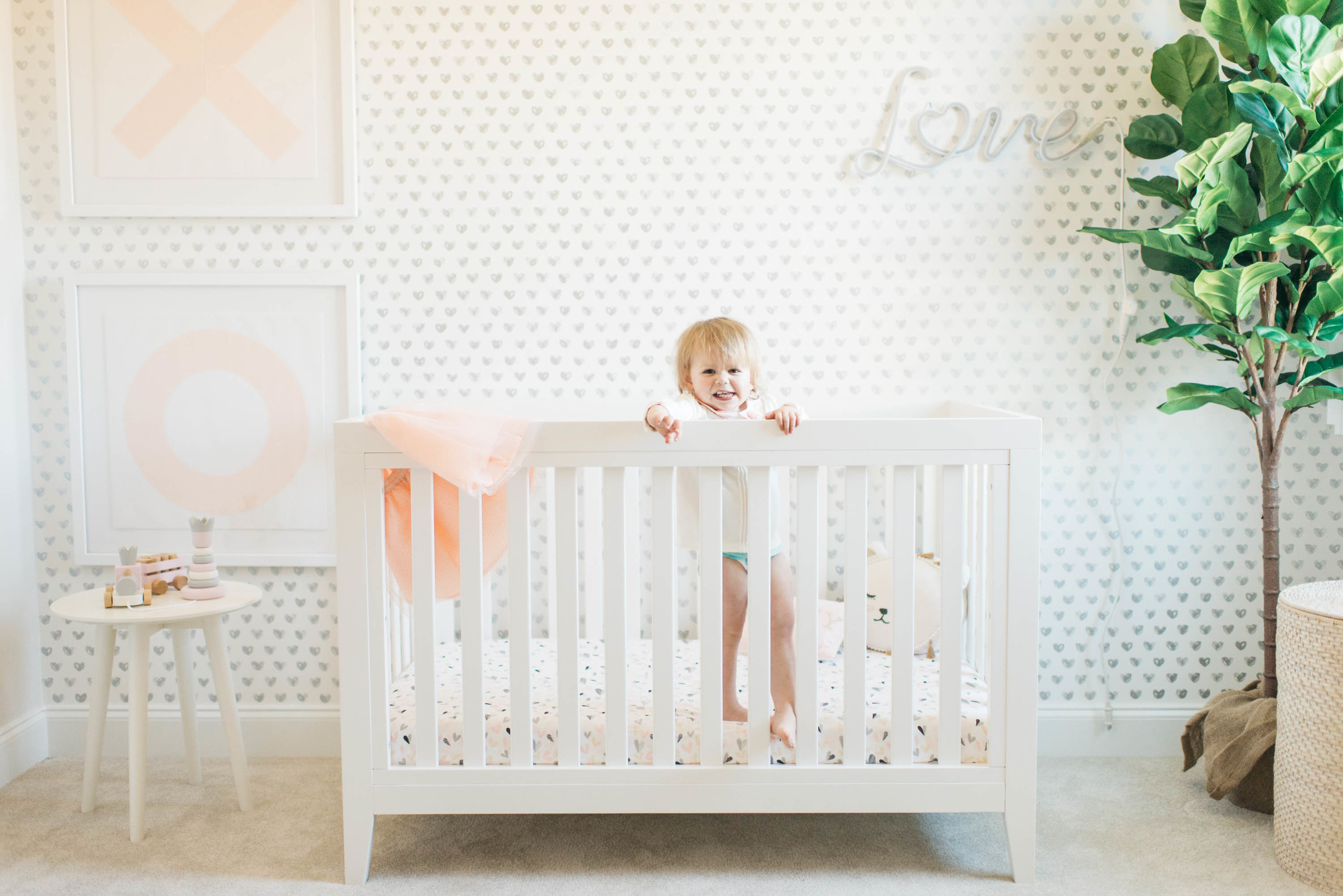 Pink, Gray and White Girl's Nursery