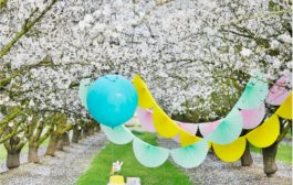 Hip Hop Hooray for an Easter Picnic!...