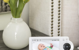 Zoom In, Zoom Out, You've Got This! Introducing Project Nursery's...
