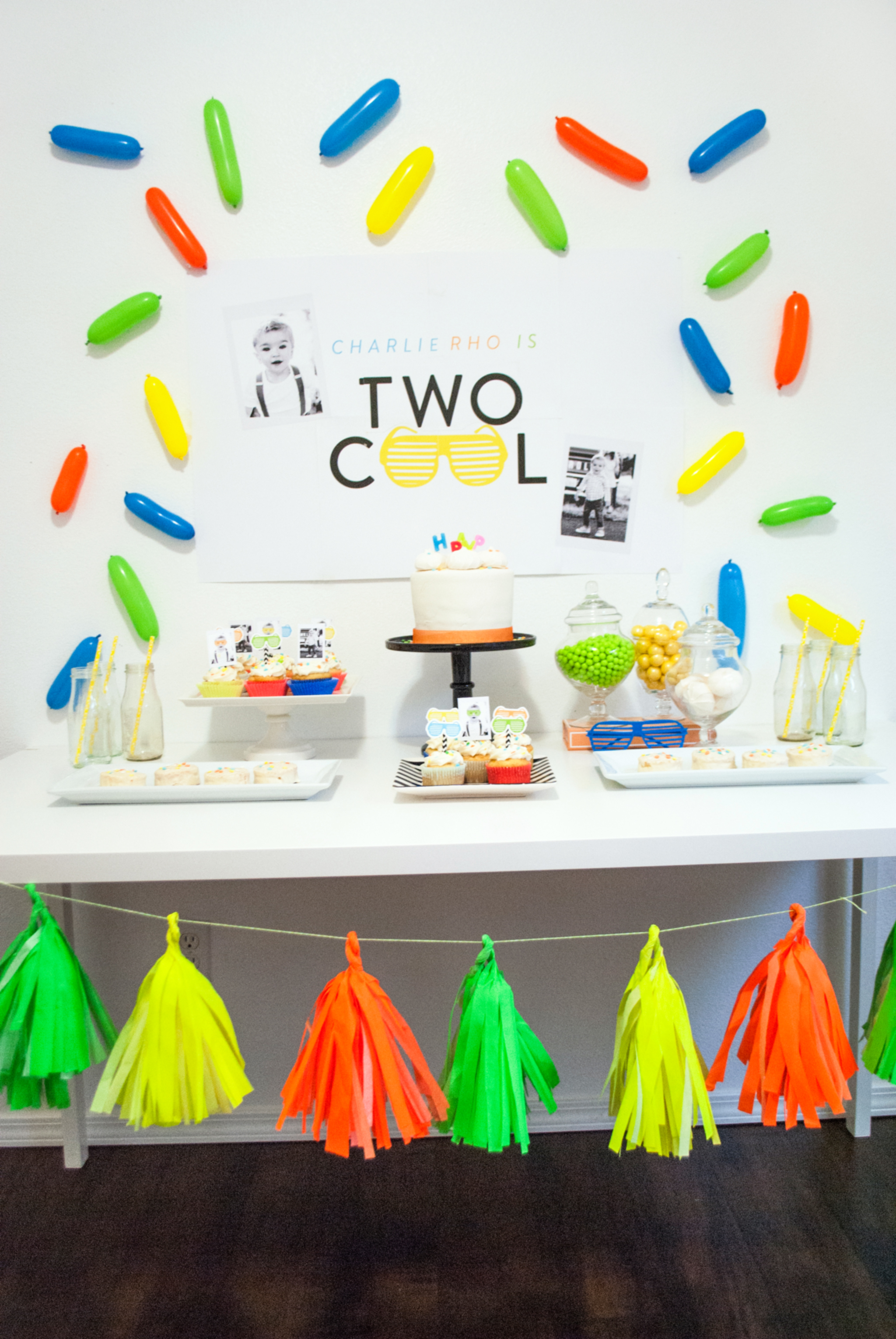Two Cool Birthday Party