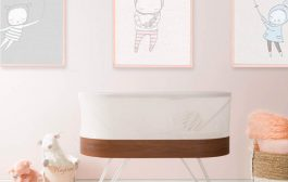 The Bassinet that is Changing the Sleep Game...