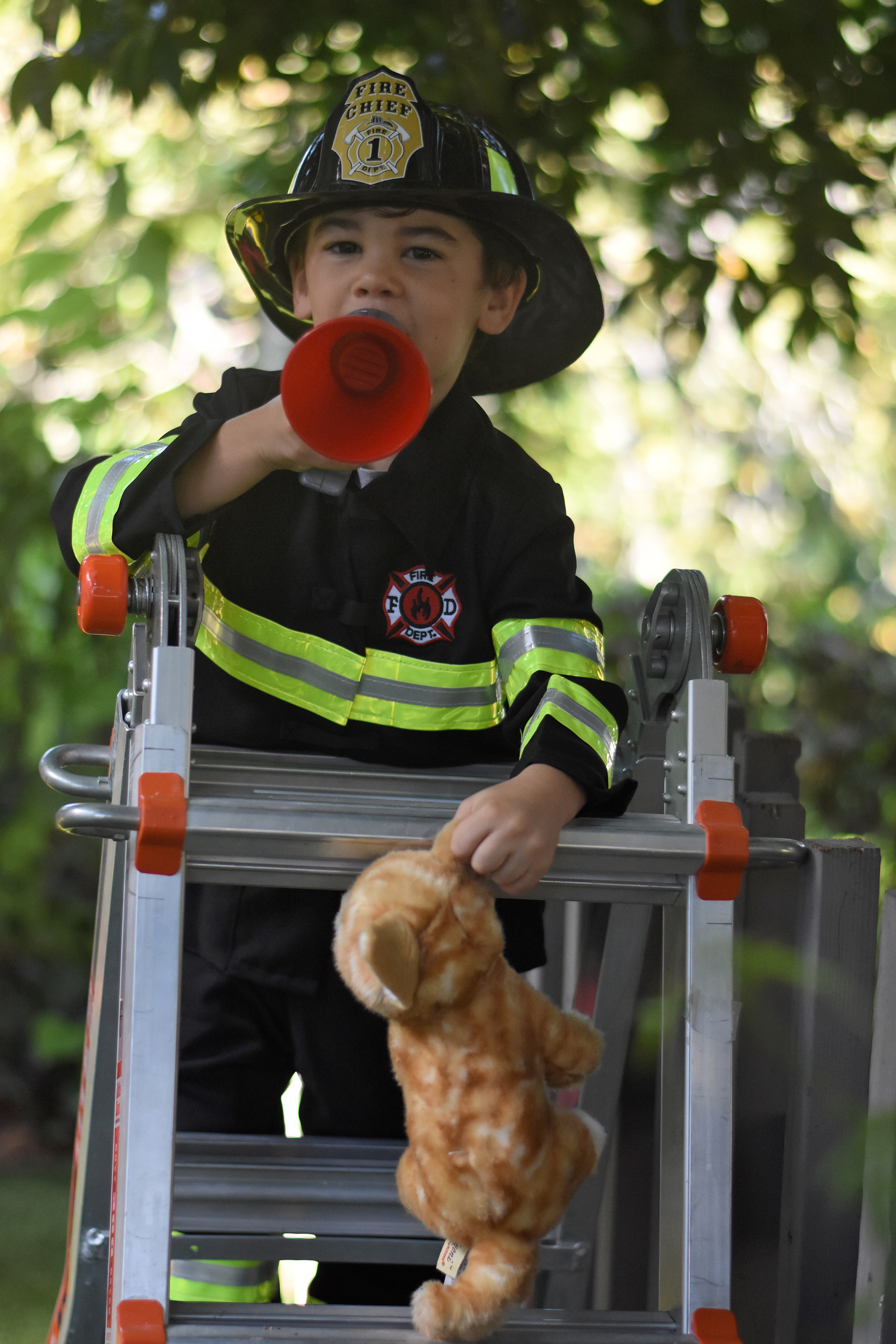 Congratulations! You completed the Firefighter Training Course and saved the kitty!