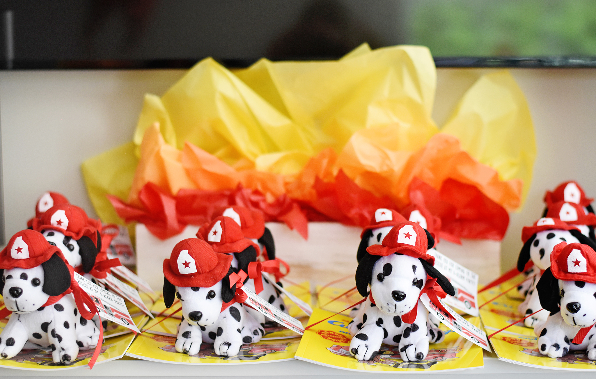 Fire Truck Party Favors - Dalmatian Puppies and Books!