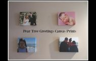 Pear Tree Greetings Canvas Prints | The Dodge Family...