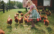 Capturing the Farmhouse Spirit in the Nursery with Natart...