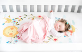 Rookie Humans Crib Sheets are What Babies' Dreams are Made of...