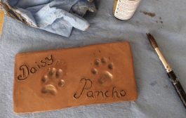 How To Make a Pet Paw Keepsake...