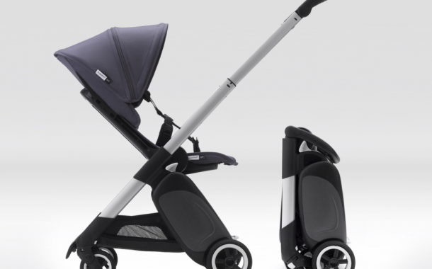The Bugaboo Ant: Small but Mighty is Right!...