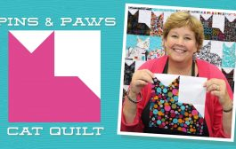 Make an Easy Pins & Paws Quilt with Jenny Doan of Missouri St...