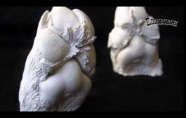 Dog Paw Casting: Behind the Scenes...