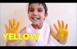Learning colors fun for kid babies, children, toddlers.Colorful f...